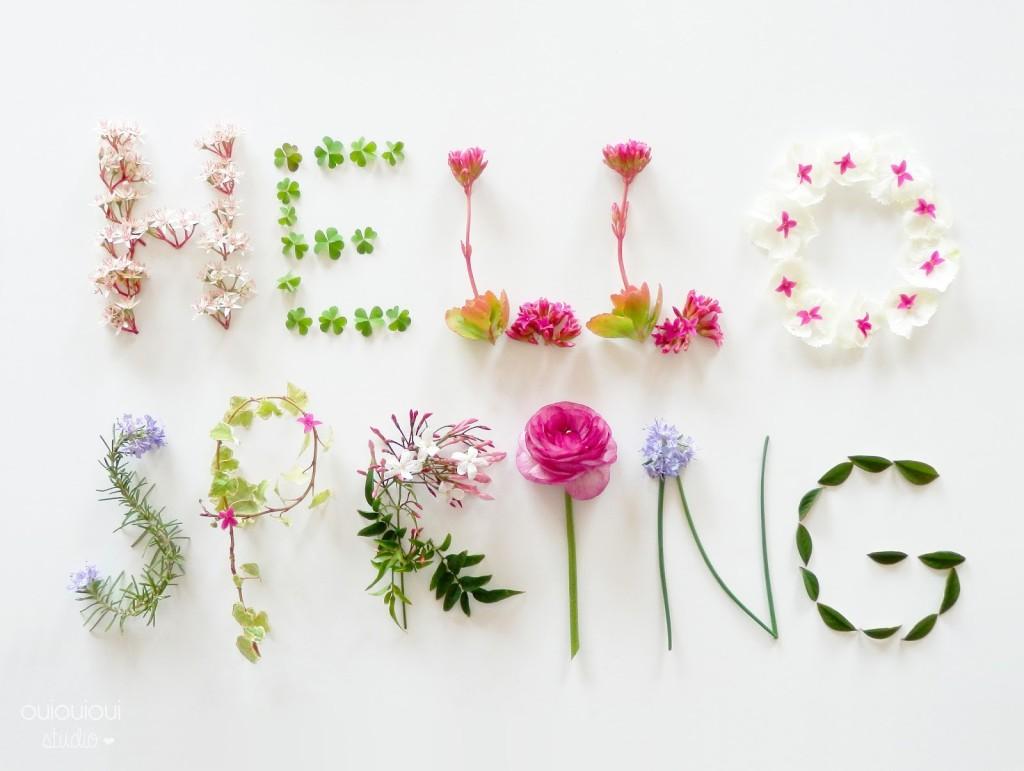 9-Hello Spring_ouiouiouistudio